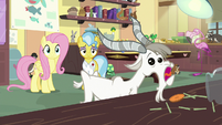 Fluttershy and Dr. Fauna see goat eating carrot pops S7E5