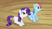 Rarity and Rainbow Dash S2E03