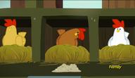 S06E10 Kura patrzy się na swoje jedzenie
