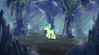 Sandbar alone in the caves S8E22