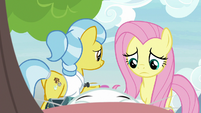 Angel approaches exhausted Fluttershy S9E18