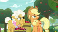 Applejack rolls her eyes at Goldie Delicious S9E10