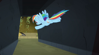 Rainbow Dash flying after Daring S4E04