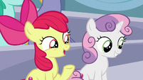 """Apple Bloom """"are you excited to see Rainbow Dash?"""" S7E7"""