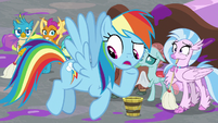 Rainbow -what are we gonna do exactly-- S8E16
