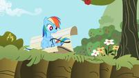 Rainbow Dash 'Right, Applejack?' S2E3
