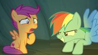 Rainbow Dash scaring Scootaloo S7E16