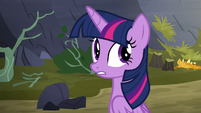 """Twilight Sparkle """"what was that?"""" S5E23"""