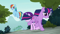 Twilight Sparkle returning to the students S8E2