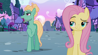 """Zephyr Breeze """"can't expect to find something"""" S6E11"""