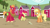 "Apple Bloom ""Let's get back to practicin'!"" S5E17"