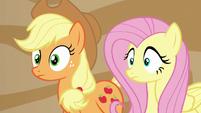 Applejack and Fluttershy hear a familiar voice S6E20