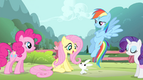 Fluttershy 'Oh! Angel's right' S4E14