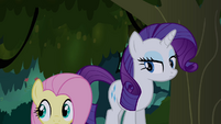 Fluttershy and Rarity in the Everfree S4E03