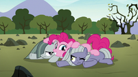 Pinkie, Limestone, and Marble in a Pie pile S8E3
