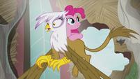 Pinkie on Gilda S5E8