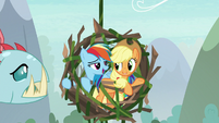 """Rainbow Dash """"I thought you'd never ask"""" S8E9"""