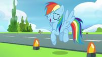 """Rainbow Dash """"right, no problem!"""" S6E7"""