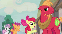 Apple Bloom -we're gonna help you- S7E8