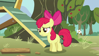 """Apple Bloom panicked """"you did?"""" S5E4"""