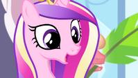 "Cadance ""in the history of the Equestria Games"" S4E24"