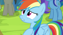 """Rainbow Dash """"but I was wrong!"""" S4E22"""