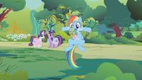 Rainbow with a Parasprite beard S01E10