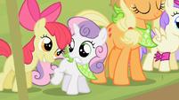 Sweetie Belle startled by Apple Bloom S2E05