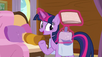 Twilight Sparkle takes out cruise schedule S7E22