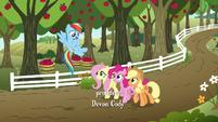 AJ, Rainbow, Fluttershy, and Pinkie on the farm S6E18