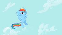 Rainbow Dash see us S2E8