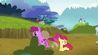 Berryshine gallops past Apple Bloom S5E4