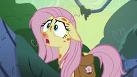 Fluttershy very weak -oh, dear- S7E20