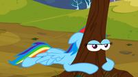 RD Angry Tree Eyes S2E22