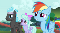 Rainbow Dash and Pegasi confused S4E16