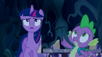 Twilight and Spike look up at the sky S5E26