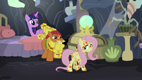 Cattail trying to reason with Fluttershy S7E20
