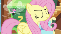 Fluttershy being firm with the Breezies S4E16