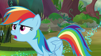 """Rainbow """"find a cragadile for a raft"""" S8E17"""
