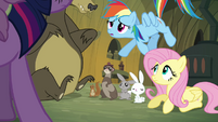 Rainbow Dash 'Fluttershy spoke with the woodland critters' S3E03
