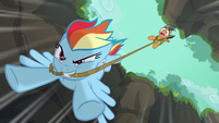 Rainbow dragging Quibble through the air S6E13