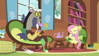 S05E07 Discord zdziwiony, że Fluttershy wspomniała Tree Hugger