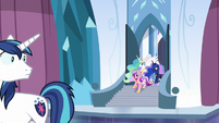 Shining Armor sees Cadance, Celestia, and Luna S6E1