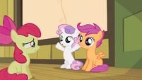 Sweetie Belle with her hooves in the air S4E17