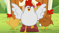 Chickens excitedly run out of the coop S6E10