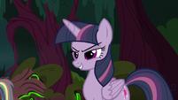 Clone of Twilight Sparkle is born S8E13
