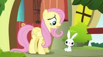 Fluttershy -I'm not sure we're even friends yet- S4E18