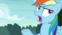 """Rainbow Dash """"it's always about you"""" S8E17"""