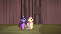 Twilight and Fluttershy look to top of gate S5E23