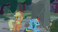 """Applejack """"it'd take a whole team of ponies"""" S7E25"""